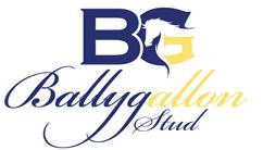 Ballygallon Stud
